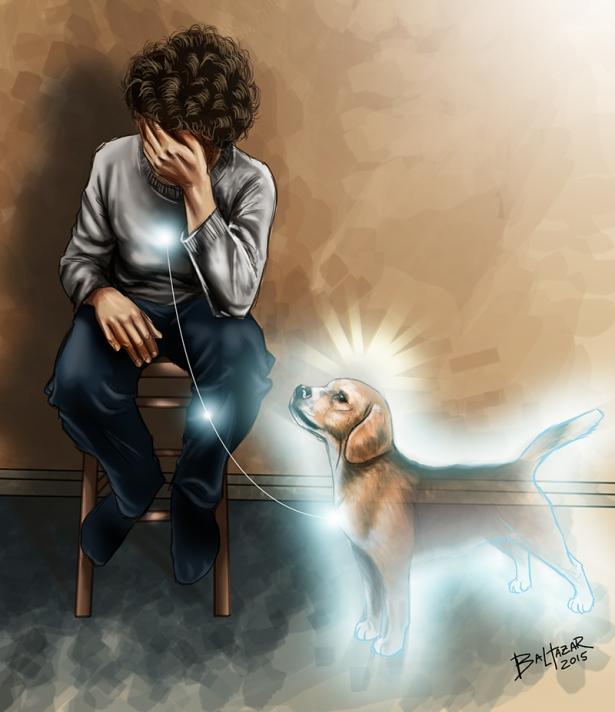 cachorro espiritismo